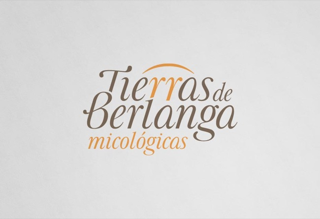 Brand design and mycological guide Tierras de Berlanga - publishing design / branding / illustration - 2015